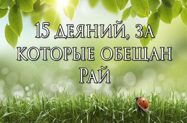 15 деяний, за которые верующим обещан Рай
