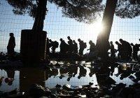Болгария защитится от беженцев стеной на границе с Грецией