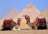 Египет обещает обеспечить безопасность российских туристов