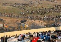 СМИ: турецкие пограничники расстреливают сирийских беженцев