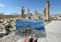 Опубликованы сравнительные фото Пальмиры до и после ИГ (7 фото)