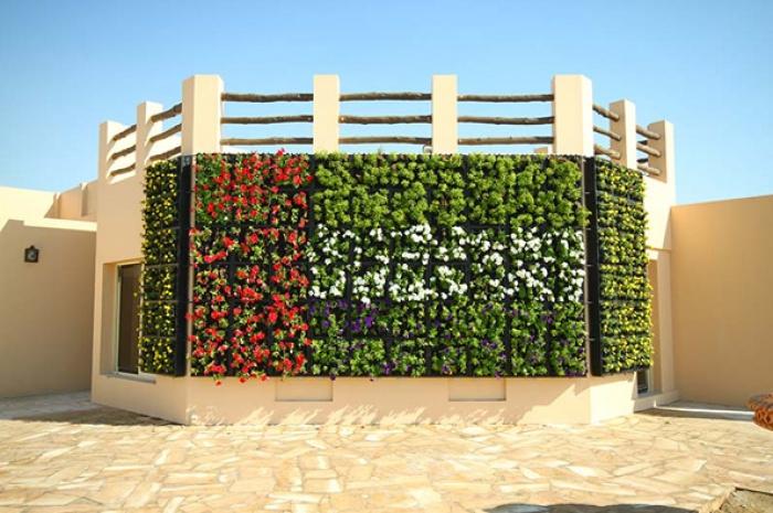 Сад, в котором будут расти все 54 растения, упомянутые в Коране (+ ВИДЕО)