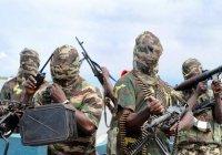 Из плена «Боко Харам» освобождены 270 человек
