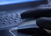 Интернет-пропагандиста ИГИЛ посадили на 2,5 года