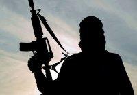 Турция намерена лишать террористов гражданства