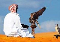 Освобожден родственник короля Катара, похищенный ранее в Ираке