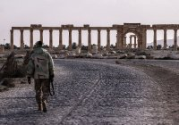 Эрмитаж предложил помощь в восстановлении Пальмиры