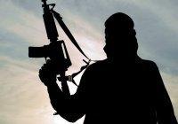 Австралия начала лишать боевиков ИГИЛ гражданства