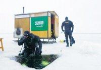 Арабские дайверы впервые в истории покорят Арктику