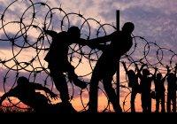 Католики призвали власти США не ограничивать поток беженцев