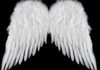 Смертны ли ангелы?
