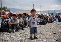 Почти 6000 детей беженцев пропали в Германии