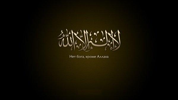 Простятся ли грехи тому, кто не соблюдал предписаний религии, но перед самой смертью произнес шахаду?
