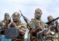 Нигерийские исламисты массово используют детей-смертников