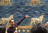 Музеи Берлина проводят бесплатные экскурсии для беженцев