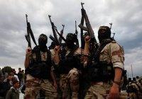 Боевики ИГИЛ казнили одного из своих главарей