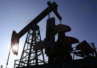 Цены на нефть упали после провала в Дохе