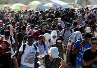 В ЕС обеспокоены поведением мигрантов
