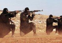 Эксперты: ИГИЛ может распасться на 2 группировки