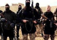 В Афганистане число боевиков ИГИЛ выросло со 100 до 10 тысяч