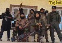В Сирии уничтожен таджик, завербовавший в ИГИЛ 100 человек