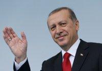 Журналистку арестовали за критику Эрдогана в Twitter
