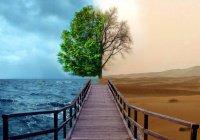 Научное обоснование предопределения или почему нельзя жалеть о прошлом?