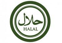 Казанские эксперты по «Халяль» обучают татарстанских производителей