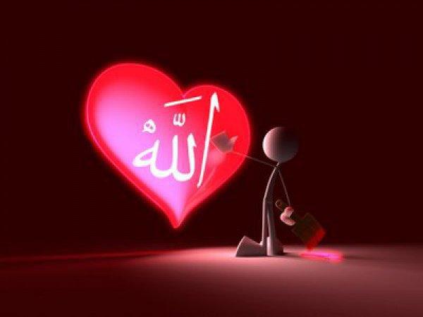 Стремитесь к довольству Всевышнего Аллаха