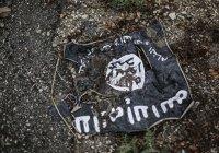 Журналист снял на скрытую камеру жизнь ИГИЛ во Франции