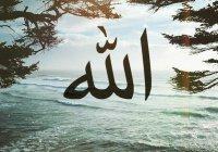 Слова, которые Аллах любит больше всего