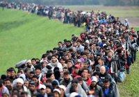 Каждый «отвергнутый» беженец может обойтись странам ЕС в 250 тысяч евро