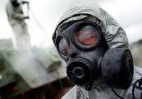 Эксперт: у ИГИЛ есть химическое и биологическое оружие