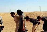 ИГИЛ казнило 30 собственных боевиков