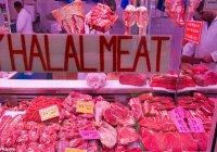 Мексика начала поставки халяльного мяса на Ближний Восток