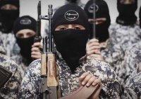 350 детей из России прошли обучение в лагерях ИГИЛ