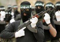 «Аль-Каида» «переезжает» в Сирию