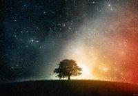 Можно ли восполнить долги по поклонению за умершего человека?