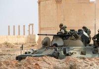 Статус ветеранов получат российские участники операции в Сирии