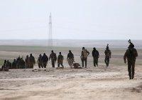 Курды начали наступление на «столицу ИГИЛ»