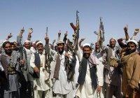 Стало известно имя нового главаря «Талибана»