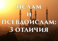 3 отличия ислама от псевдоислама