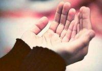 Может ли мусульманин просить Всевышнего о каре для обидчика?