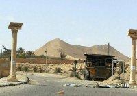 Крупную братскую могилу жертв ИГИЛ нашли под Пальмирой