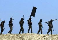 Сотни афганских семей покинули свои дома, опасаясь ИГИЛ