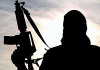 Портрет среднестатистического боевика составили на Северном Кавказе