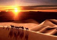 Общий исламский календарь предлагают создать в Турции