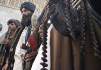 Талибан планирует усилить атаки во время Рамадана
