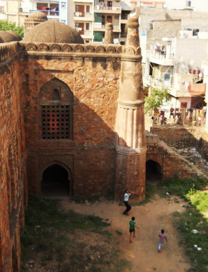 Жуткий кадр: тысячи летучих мышей облюбовали купол индийской мечети