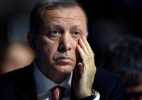 Эрдоган назвал причину уничтожения российского Су-24